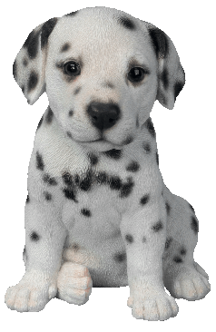 Dal Puppy