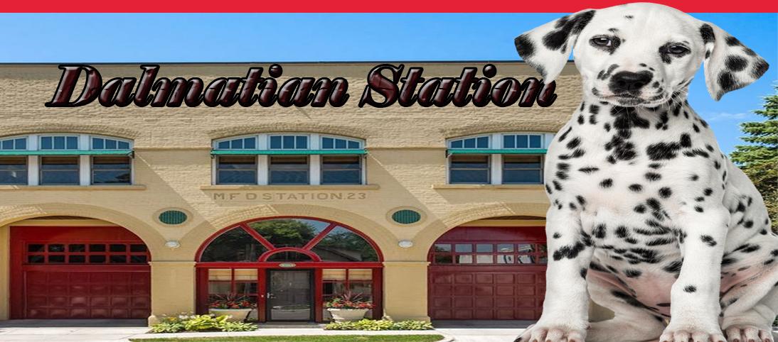 Dalmatian Station Header